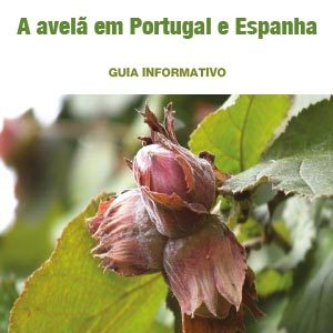 guia_informativo_avela